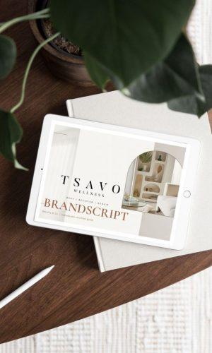 Tsavo StoryBrand Brandscript Example